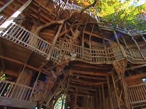 burgess-said-he-built-a-staircase-to-nowhere-around-the-oak-and-the-treehouse-grew-up-out-around-and-through-until-it-became-just-a-terrific-treehouse