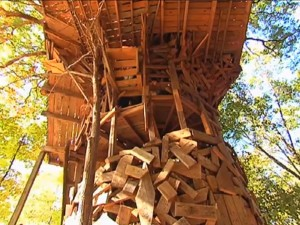 the-entire-treehouse-is-build-around-an-85-foot-oak-tree