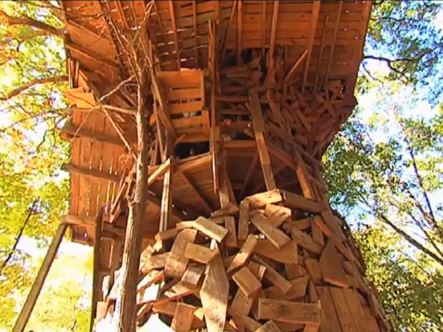 World 39 s largest treehouse and its in crossville offbeat - Biggest treehouse in the world ...